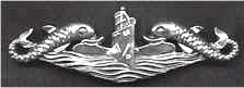 U.S. Pin-back sterling silver dolphins, deep wave - image